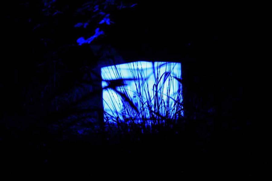 Lichtblicke - 07